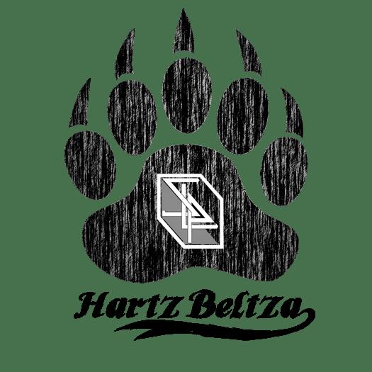 Stone Light Productions graphisme design webdesign hartz beltza woodland